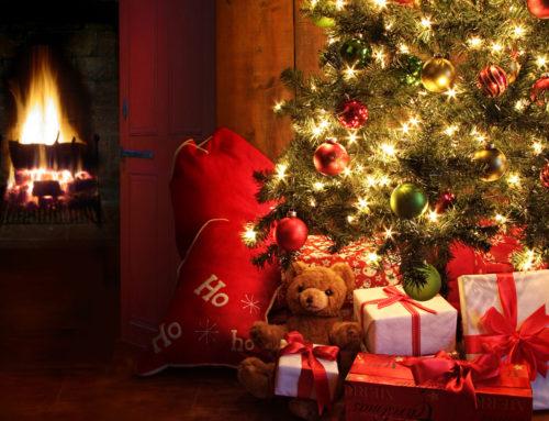 Weihnachtsbuchaktion!!