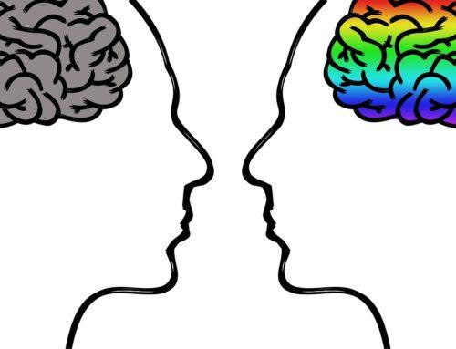 Die 12 Prinzipien der Neurodidaktik – Teil 3 (von 3)